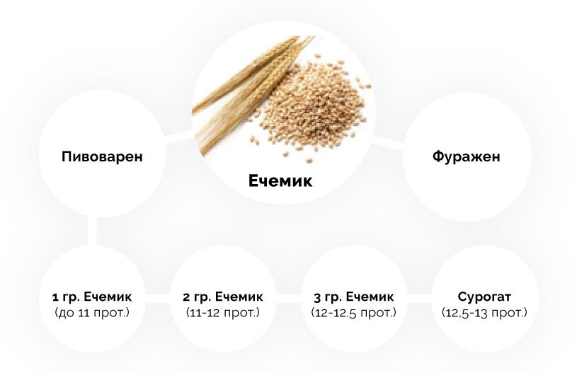 Ечемик