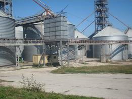 grainstore_08